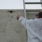 Beehive removal estimate